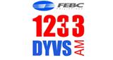 1233 DYVS