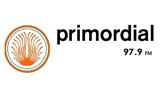 Radio Primordial