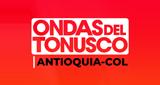 Ondas del Tonusco