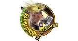 Rádio Paiol
