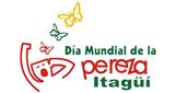 DIA MUNDIAL DE LA PEREZA