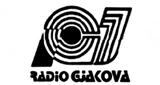 13. Radio Gjakova