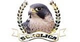 Radio Sokolica