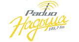Радио Надыма