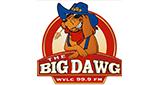 The Big Dawg