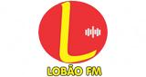 LOBÃO FM 87.9