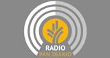 Radio Pan Diario