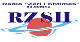 Radio Zeri i Shtimes