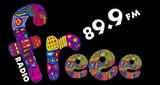 Freee 89.9 FM