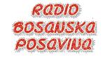 Bosanska Posavina