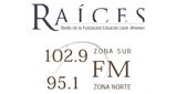 Raíces FM