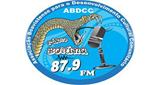 Rádio Boiuna