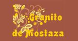 Granito de Mostaza Radio