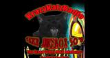 1KKR - Jukebox 50's