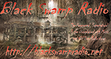 Black Swamp Digital Radio