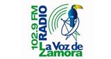 La Voz de Zamora
