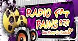 Rádio Pains FM
