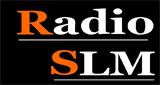 Radio SLM
