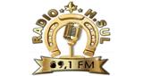 H. Sul FM
