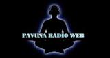 Pavuna Rádio Web