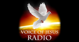 Voice of Jesus