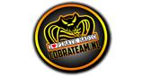 Cobra Team Radio
