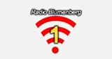 Radio Blumenberg 1