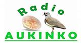 Radio Mapuche Aukinko