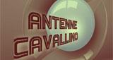 Antenne Cavallino