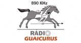 Rádio Guaicurus